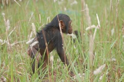 4. Wanza in December 2006.jpg