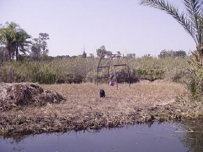 5. the small island.jpg