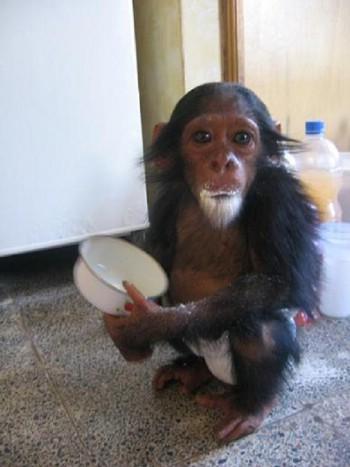 9. Wanza eating milk powder.jpg