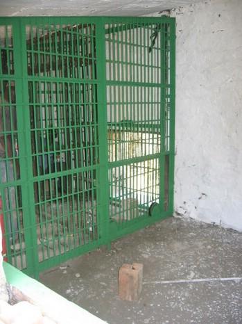 night enclosure restored.jpg