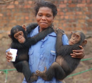 Angeline with Bachi (left) and Shasa (right)