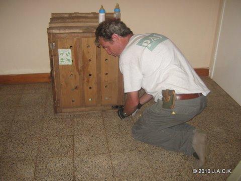 Franck opening Ekolo's transfer crate