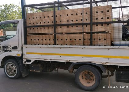 DRC monkeys seized in Zimbabwe – ongoing repatriation!