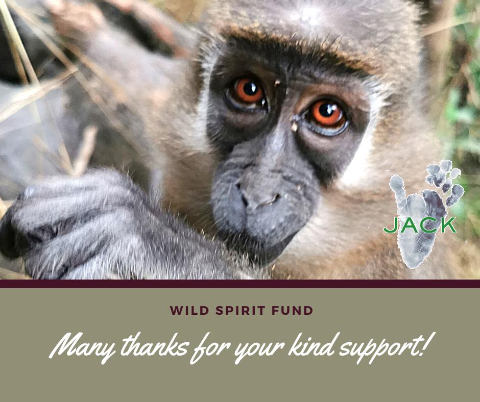 Thank you, Wild Spirit Fund!