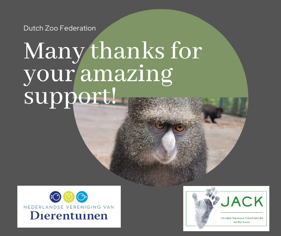Great help from the Dutch Zoo Federation